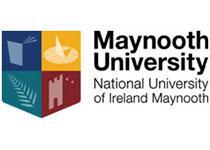 爱尔兰国立梅努斯大学线上行前说明会